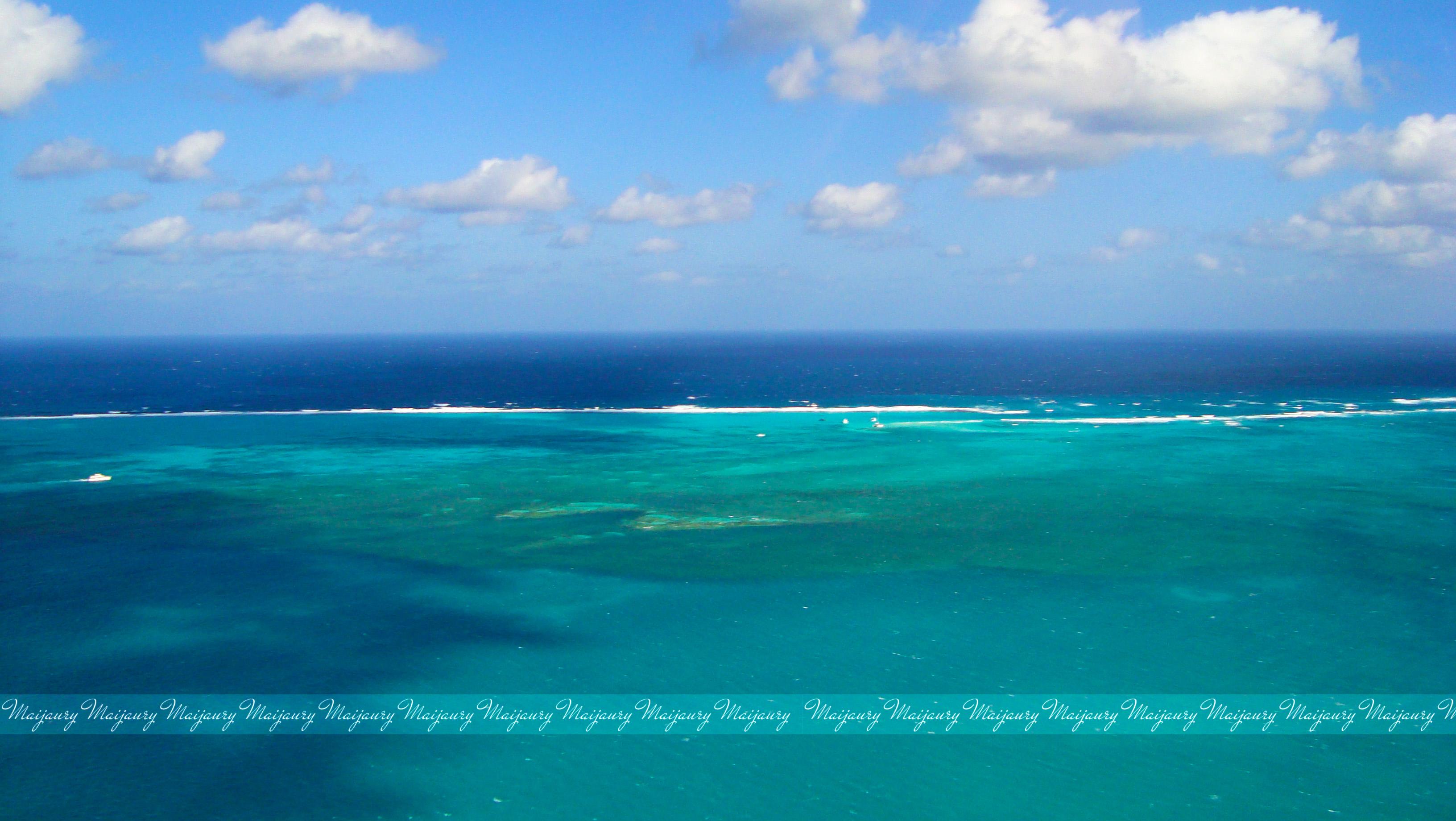 Underwater View Of School Of Fish Swarming In Shallow Ocean Water ...
